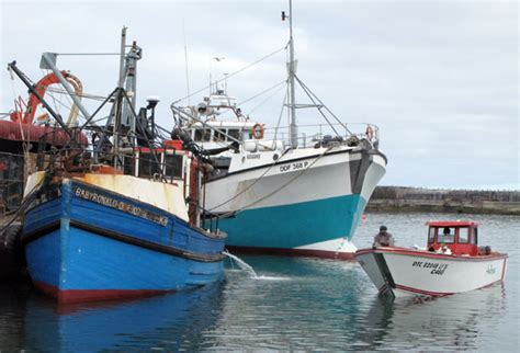 cape craft boats south africa gone fishing 187 caravan parks
