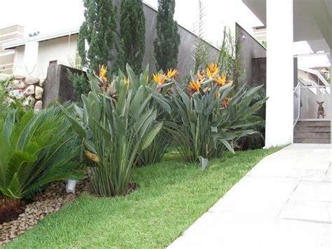 disenos de jardines para casas dise 241 o jardines tropicales dise 241 o de interiores ideas