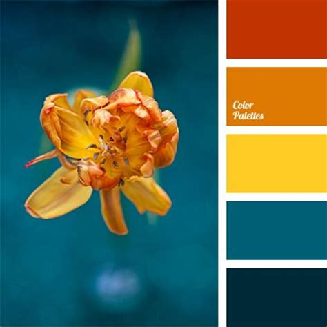 orange and blue combination 25 best ideas about orange color palettes on pinterest