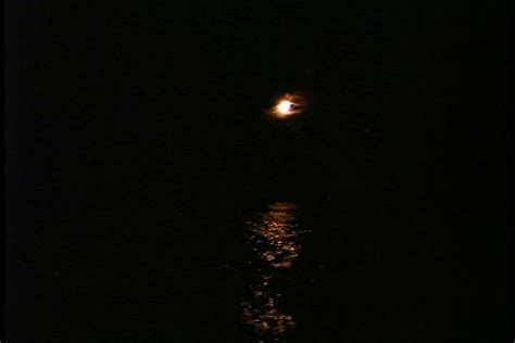 Moon Ls by Ls Orange Moon In Black Sky Orange Moonlight Is