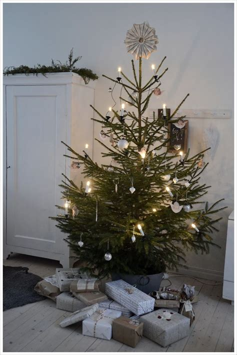28 best what is christmas tree called mailonline