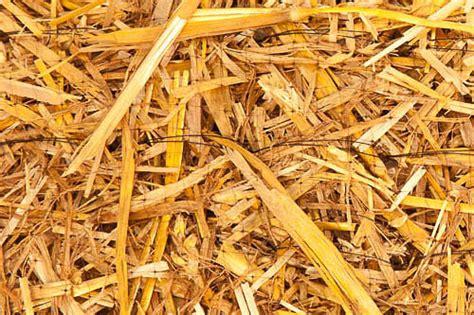 Straw Landscape Matting - product category landscaper s pardise