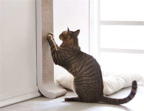 Cat Scratching by 4claws Wall Mount Cat Scratching Post 187 Gadget Flow