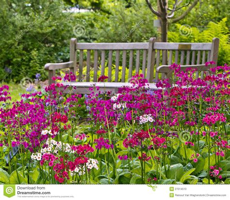 rustic backyard rustic garden bench stock photo image 27014510