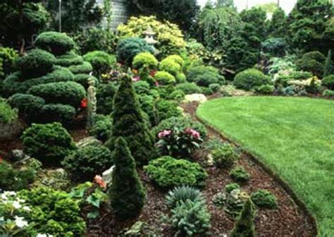 Conifer Garden Ideas Interesting Garden 2