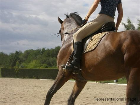 Horse Riding Experience   Birthday Surprises