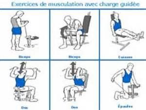 programme de musculation simple et pour d 233 butant