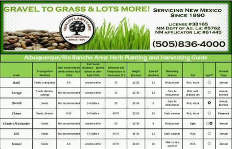 herb care chart herb planting and harvesting guide quality lawn care 505 836 4000