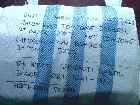 Jual Kolam Terpal Padang jual kolam terpal di brebes hub 08111041161