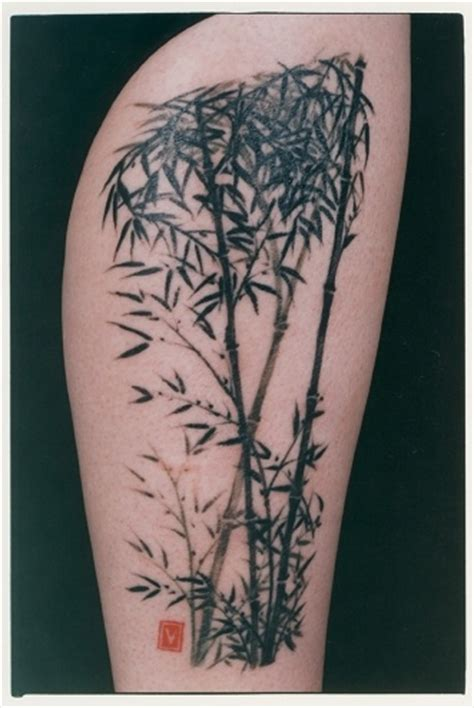 bamboo tattoos 70 best images about ideas on pastel