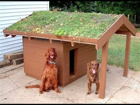 diy outdoor dog house luxury outside dog house plans new home plans design
