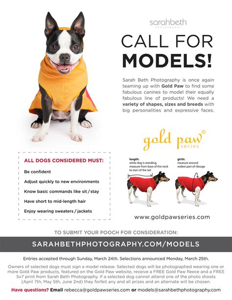A Call For Model Pets call for models minneapolis paul minnesota