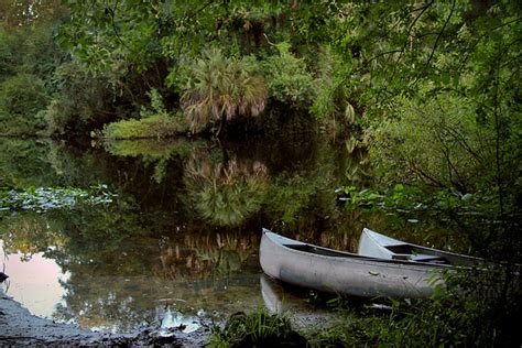 canoes rental near me canoeing in florida a fun and cheap nature adventure