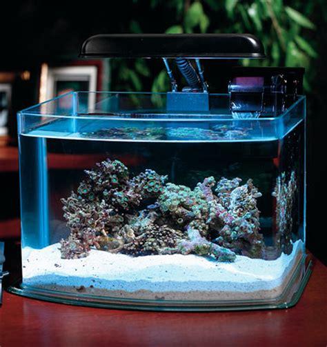 Small Desktop Saltwater Aquarium Desktop Small Aquarium Starter Kits Picotope 3 Gallon Aquarium Kit