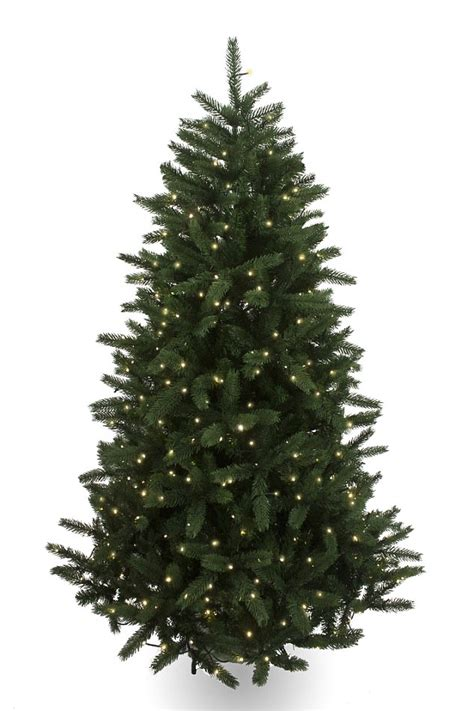 christmas trees and lights 7ft 3in green kateson fir can you tell which christmas trees are luxury daily