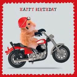 hamster motorbike birthday card thunder road biker greeting card new ebay