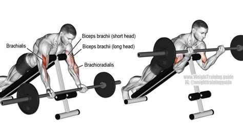 push up bench press equivalent prone incline barbell curl exercise exercise pinterest