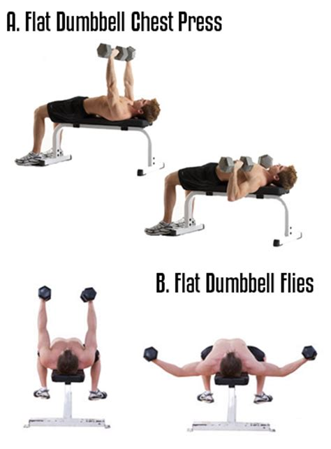 chest workout with dumbbells at home most popular