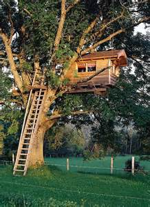Backyard Treehouse 20 Modern Tree Houses By Baumraum Home Design And Interior