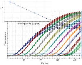 quantification of mrna using real time rt pcr society