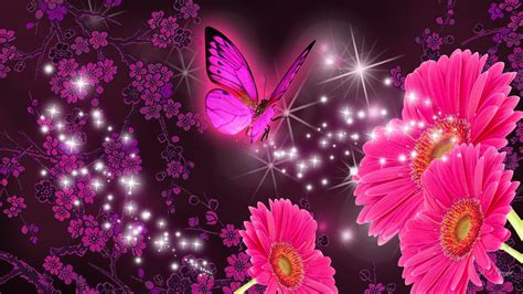 pink  purple butterfly wallpaper  images