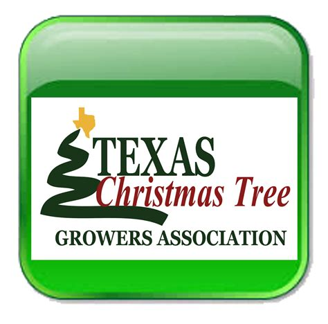 christmas tree growers association buffalo ny tree farms