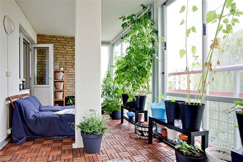 great apartment balcony vegetable garden balcony ideas