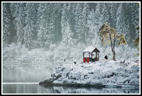 peaceful christmas snow scenes
