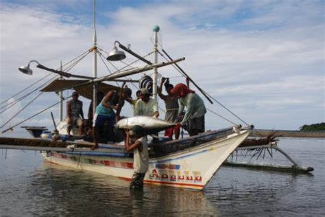 fishing boat for sale in indonesia 20m impact fund launches with indonesia philippines