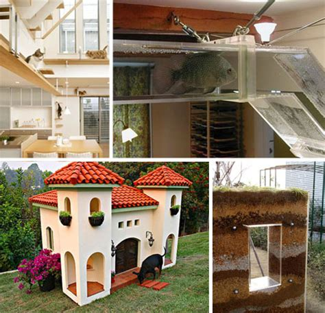 awesome dog houses out of the dog house 25 awesome pet homes habitats