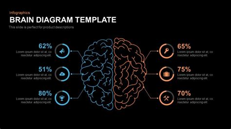 Brain Diagram Template Slidebazaar Brain Ppt Template
