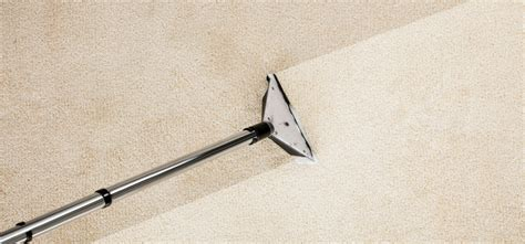 How Much Does Cleaning Cost by How Much Does Professional Carpet Cleaning Cost Clean