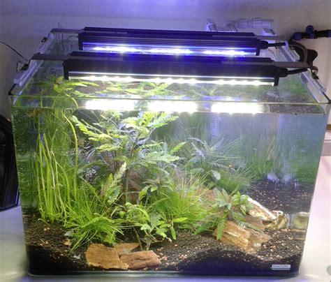 led aquarium beleuchtung erfahrung mitras lightbar 2 ghl deutschland