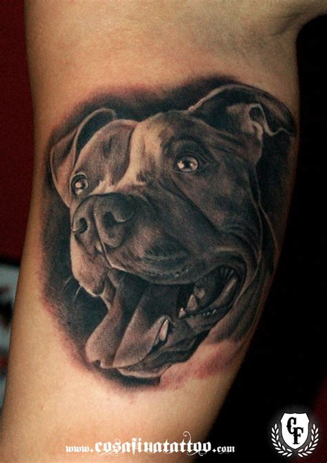 pitbull tattoo 25 best ideas about pit bull on are