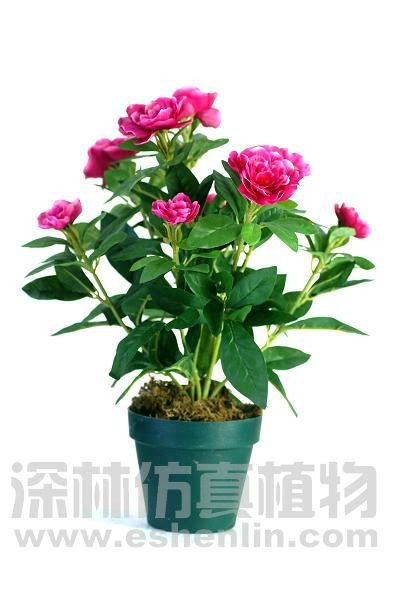 High Imitation Potted Indoor Plants Decoration Simulation High Imitation Azalea Potted Tree On Buy Azalea