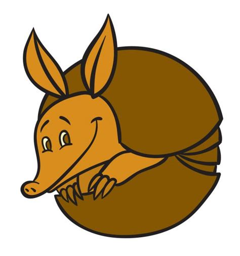 armadillo stock  illustrations  vector art depositphotos