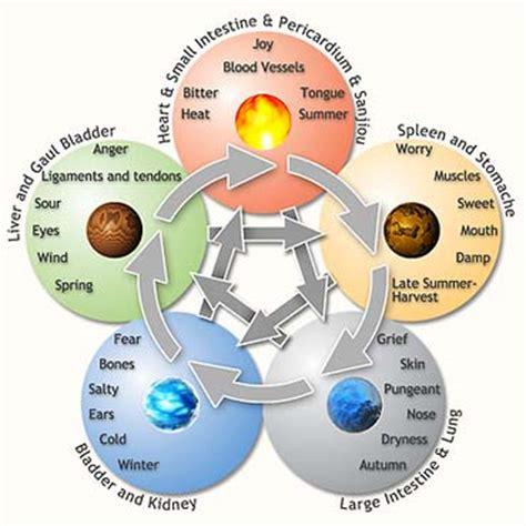 5 elements mgeducationstuff