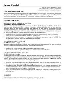 exle management analyst resume free sle