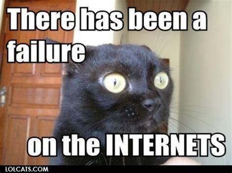 Internet Cat Meme - lolcats internet cat