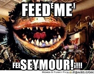 feed me seymour meme feed me seymour plant from shop of horrors