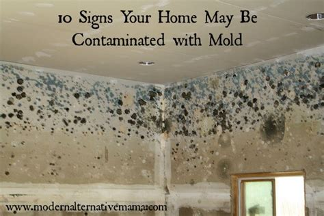 Symptoms Of Mold In House by 10 Signs Your Home May Be Contaminated With Mold Modern