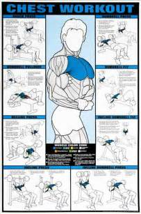 Best Dumbbell Chest Workout » Home Design 2017