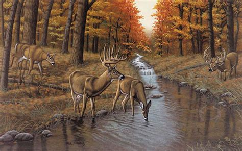 wildlife wall mural wildlife murals animal wallpaper