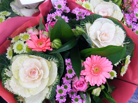 beautiful flowers image worlds beautiful flowers images wallpapers pictures