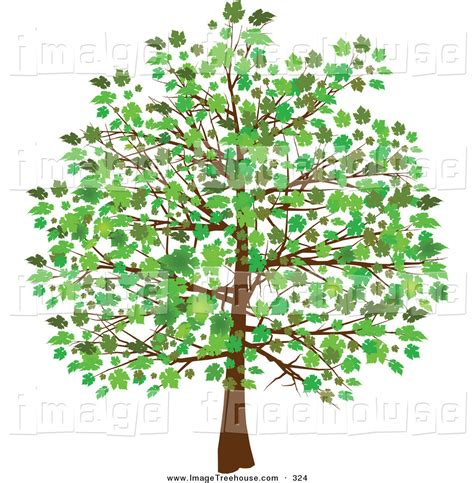 clip tree free tree clipart look at tree clip images