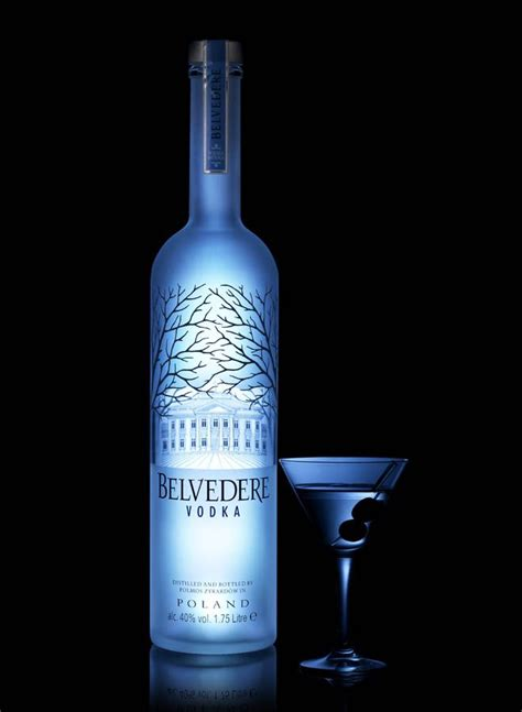 martini belvedere belvedere vodka light up luminous bali wedding