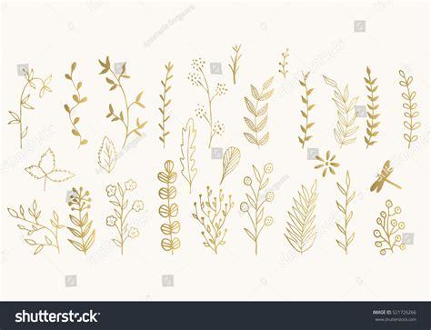 floral design elements vector set set golden vector floral design elements stock vector