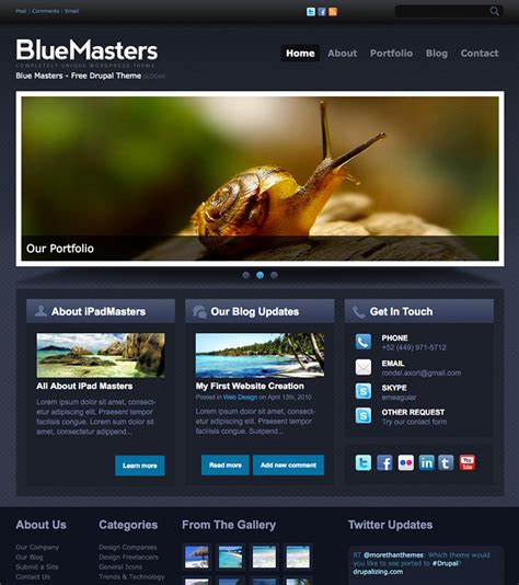 drupal themes bluemasters more than just themes