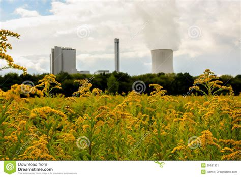 nature  industry stock image image  energy floral