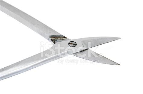 Surgical Scissors Images